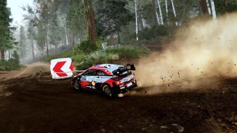 WRC10_Screenshot_02