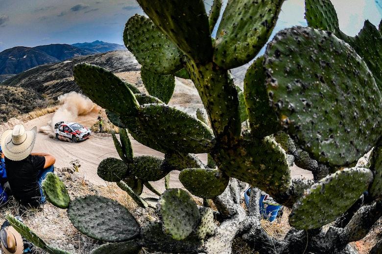 Kalle Rovanperä Toyota WRC Rally México 2020